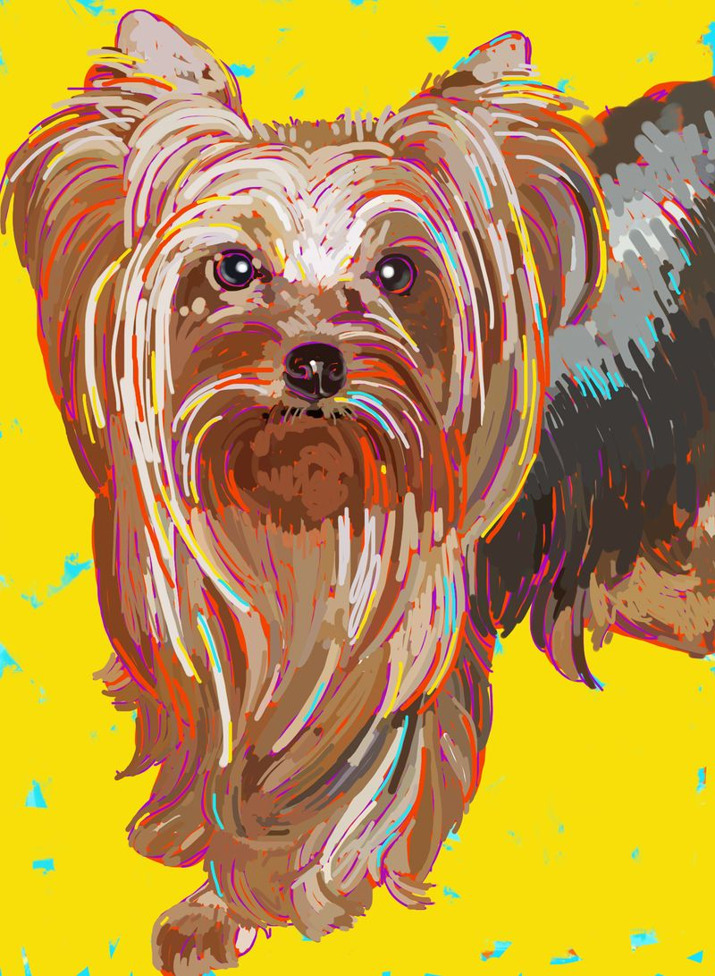 Dog paintings iPad  0015