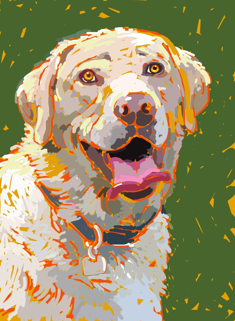 Dog paintings iPad  0005