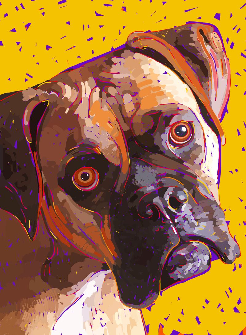 Dog paintings iPad  0024
